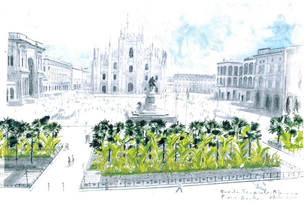Le palme in Piazza Duomo dividano la rete