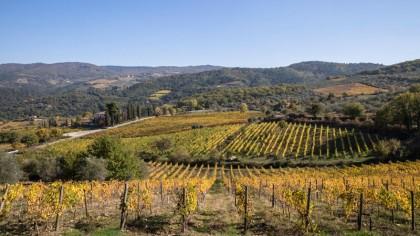 Cosa vedere in Toscana il Chianti