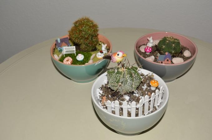 giardino in una tazza