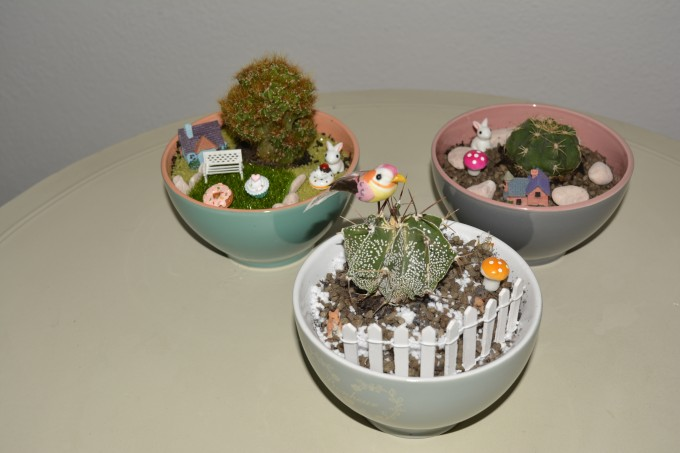 Come realizzare un giardino in una tazza - Realizzare un giardino ...
