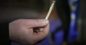 E se passasse la legge sulla legalizzazione della cannabis? La marijuana di Stato in 22 punti